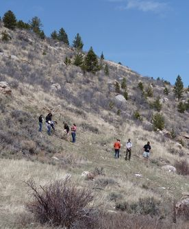 Students exploring ungulate habitat on a Wyoming mountainsite.
