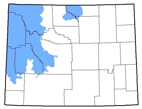 Map of the native range of the Columbia Spotted Frog