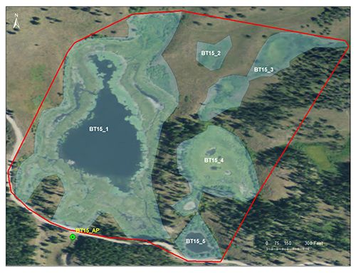 Lily Lake catchment