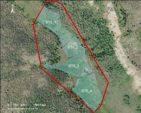 Indian Trail Ponds catchment