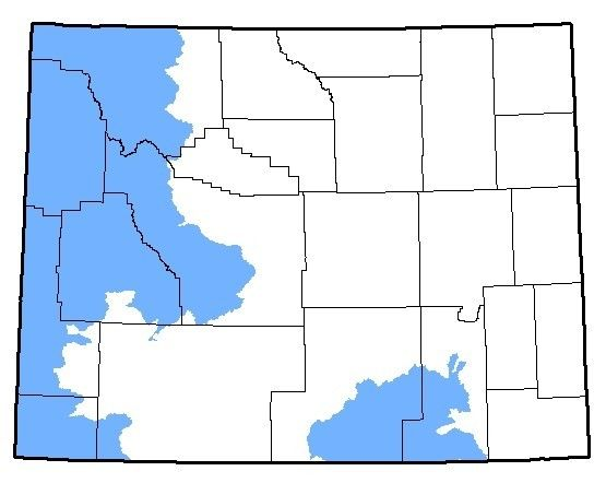 Map of the native range of the Boreal Toad in Wyoming