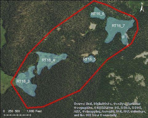 Map of Morrison Creek Catchment